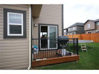 Photo 30: 140 PAINT HORSE Drive: Cochrane House for sale : MLS®# C4027204