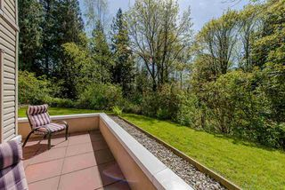 """Photo 13: 111 3176 GLADWIN Road in Abbotsford: Central Abbotsford Condo for sale in """"REGENCY PARK"""" : MLS®# R2162713"""