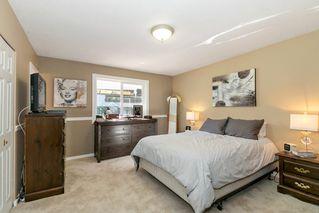 Photo 11: 22210 136 Avenue in Maple Ridge: North Maple Ridge House for sale : MLS®# R2315206
