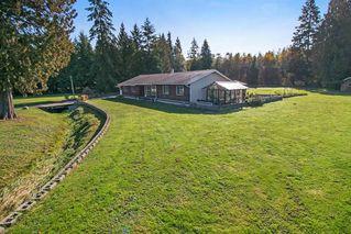 Photo 18: 22210 136 Avenue in Maple Ridge: North Maple Ridge House for sale : MLS®# R2315206