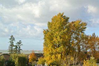 """Main Photo: 597 4688 HAWK Lane in Delta: Cliff Drive Townhouse for sale in """"AERIE WALK"""" (Tsawwassen)  : MLS®# R2320984"""