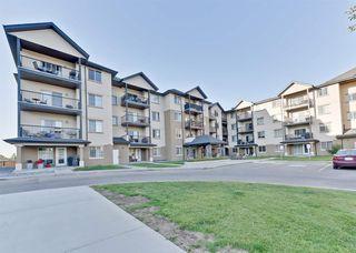 Main Photo: 216 10520 56 Avenue in Edmonton: Zone 15 Condo for sale : MLS®# E4136382