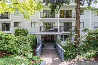 """Photo 17: 102 428 AGNES Street in New Westminster: Downtown NW Condo for sale in """"SHANLEY MANOR"""" : MLS®# R2330083"""