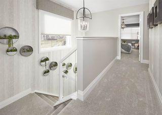 Photo 11: 2808 202 Street in Edmonton: Zone 57 House for sale : MLS®# E4143152