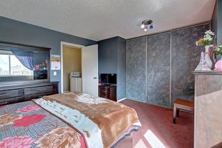 Photo 20: 307 FALTON Drive NE in Calgary: Falconridge Detached for sale : MLS®# C4238621