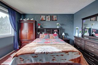 Photo 17: 307 FALTON Drive NE in Calgary: Falconridge Detached for sale : MLS®# C4238621