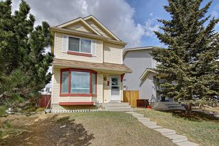 Photo 43: 307 FALTON Drive NE in Calgary: Falconridge Detached for sale : MLS®# C4238621