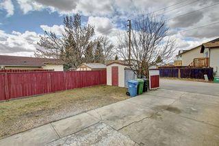 Photo 40: 307 FALTON Drive NE in Calgary: Falconridge Detached for sale : MLS®# C4238621