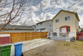 Photo 36: 307 FALTON Drive NE in Calgary: Falconridge Detached for sale : MLS®# C4238621