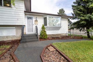 Photo 2: 14103 74 Street in Edmonton: Zone 02 House for sale : MLS®# E4158618