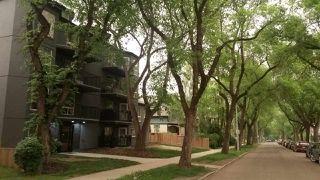 Main Photo: 201 9854 88 Avenue in Edmonton: Zone 15 Condo for sale : MLS®# E4159279