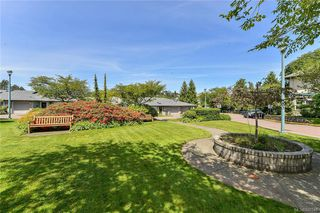 Photo 9: 113 1485 Garnet Rd in Saanich: SE Cedar Hill Condo for sale (Saanich East)  : MLS®# 840548