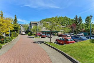 Photo 19: 113 1485 Garnet Rd in Saanich: SE Cedar Hill Condo for sale (Saanich East)  : MLS®# 840548