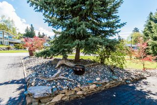 Photo 61: 2721 Northeast 17 Street in Salmon Arm: Appleyard House for sale (NE Salmon Arm)  : MLS®# 10134504