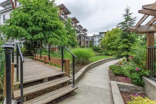 Photo 23: 103 6688 120 Street in Surrey: Condo for sale : MLS®# R2179807