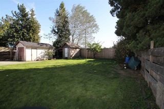 Photo 20: 32514 PANDORA Avenue in Abbotsford: Abbotsford West House for sale : MLS®# R2211955