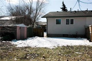 Photo 19: 235 Fairlane Avenue in Winnipeg: Crestview Residential for sale (5H)  : MLS®# 1807343