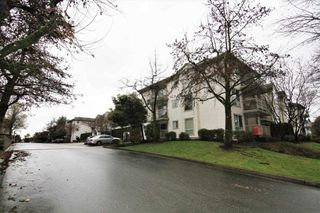"Photo 16: 202 19122 122 Avenue in Pitt Meadows: Central Meadows Condo for sale in ""EDGEWOOD MANOR"" : MLS®# R2330106"