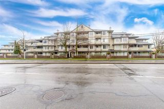 "Main Photo: 211 12110 80 Avenue in Surrey: West Newton Condo for sale in ""La Costa Green"" : MLS®# R2338639"