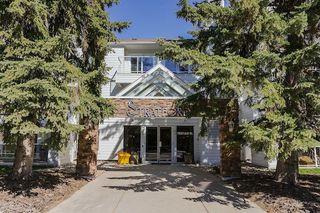 Photo 29: 306 7327 118 Street in Edmonton: Zone 15 Condo for sale : MLS®# E4145952