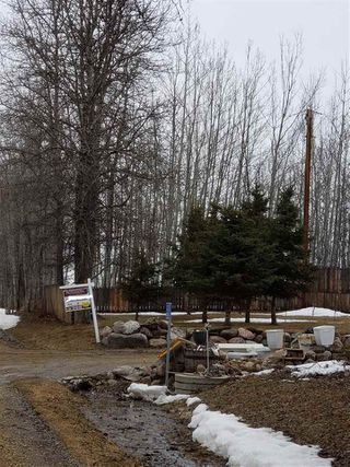 Photo 28: 470075 RGE RD 42: Rural Wetaskiwin County Manufactured Home for sale : MLS®# E4149243