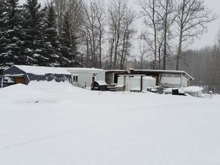 Photo 9: 470075 RGE RD 42: Rural Wetaskiwin County Manufactured Home for sale : MLS®# E4149243