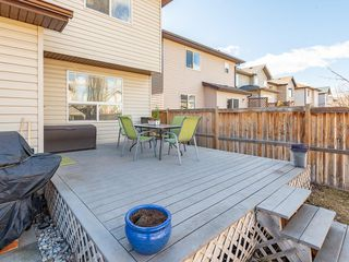 Photo 35: 42 BRIGHTONDALE Park SE in Calgary: New Brighton Detached for sale : MLS®# C4238609