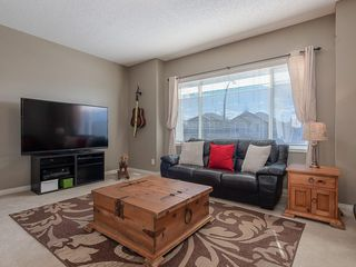 Photo 19: 42 BRIGHTONDALE Park SE in Calgary: New Brighton Detached for sale : MLS®# C4238609