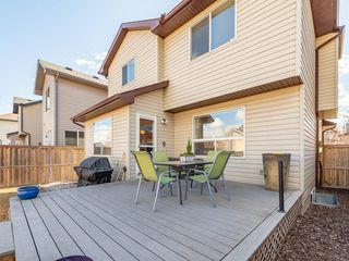 Photo 36: 42 BRIGHTONDALE Park SE in Calgary: New Brighton Detached for sale : MLS®# C4238609