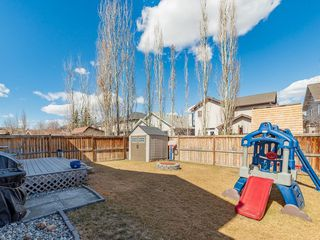 Photo 38: 42 BRIGHTONDALE Park SE in Calgary: New Brighton Detached for sale : MLS®# C4238609