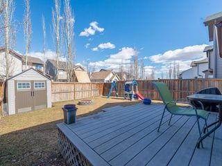 Photo 37: 42 BRIGHTONDALE Park SE in Calgary: New Brighton Detached for sale : MLS®# C4238609