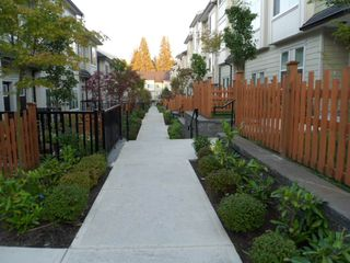Photo 4: 116 13670 62 Avenue in Surrey: Sullivan Station Condo