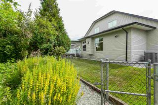 Photo 17: 4875 214A Street in Langley: Murrayville House for sale : MLS®# R2383069