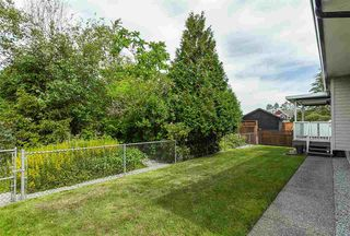 Photo 5: 4875 214A Street in Langley: Murrayville House for sale : MLS®# R2383069