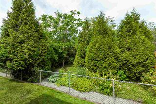 Photo 20: 4875 214A Street in Langley: Murrayville House for sale : MLS®# R2383069