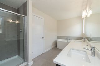 Photo 25: 5312 22 Avenue SW in Edmonton: Zone 53 House for sale : MLS®# E4174779