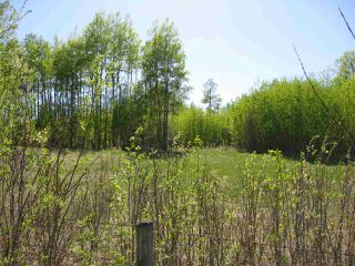 Photo 3: Hwy 616 RR 24: Rural Leduc County Rural Land/Vacant Lot for sale : MLS®# E4175719