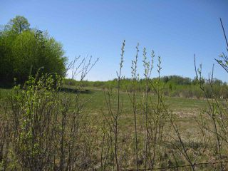 Photo 4: Hwy 616 RR 24: Rural Leduc County Rural Land/Vacant Lot for sale : MLS®# E4175719