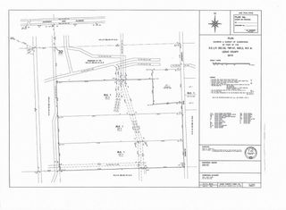 Photo 2: Hwy 616 RR 24: Rural Leduc County Rural Land/Vacant Lot for sale : MLS®# E4175719