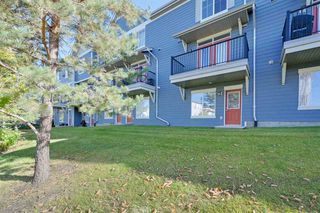 Photo 30:  in Edmonton: Zone 53 Townhouse for sale : MLS®# E4176337