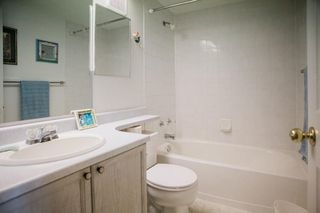 Photo 25: 15 30 IRONWOOD Point: St. Albert Townhouse for sale : MLS®# E4181783