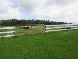 Photo 29: 27332 Sec Hwy 651: Rural Westlock County House for sale : MLS®# E4204094