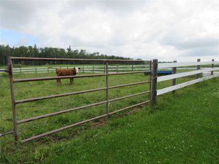 Photo 30: 27332 Sec Hwy 651: Rural Westlock County House for sale : MLS®# E4204094