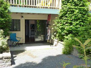 Photo 9: 108 3277 Quadra St in VICTORIA: SE Maplewood Condo for sale (Saanich East)  : MLS®# 733759