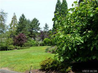 Photo 16: 108 3277 Quadra St in VICTORIA: SE Maplewood Condo for sale (Saanich East)  : MLS®# 733759