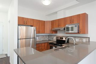 """Main Photo: 404 20200 56 Avenue in Langley: Langley City Condo for sale in """"The Bentley"""" : MLS®# R2116212"""
