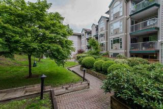 Main Photo: 206 2963 NELSON Place in Abbotsford: Central Abbotsford Condo for sale : MLS®# R2118440