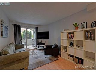Photo 13: 101 494 Marsett Pl in VICTORIA: SW Royal Oak Condo Apartment for sale (Saanich West)  : MLS®# 754178