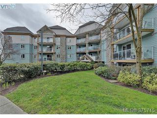 Photo 10: 101 494 Marsett Pl in VICTORIA: SW Royal Oak Condo Apartment for sale (Saanich West)  : MLS®# 754178