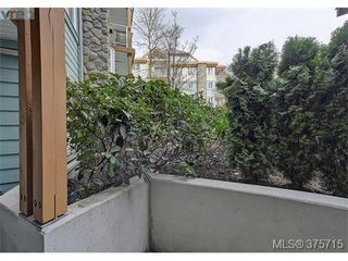 Photo 16: 101 494 Marsett Pl in VICTORIA: SW Royal Oak Condo Apartment for sale (Saanich West)  : MLS®# 754178